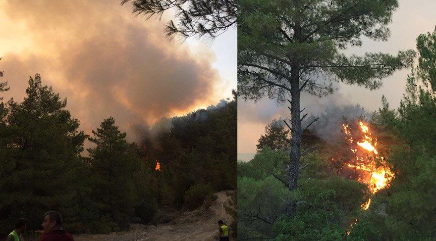 """FOTO:DHA - Antalya Orman Bölge Müdürü Mustafa Türk """"Anormal bir hava olmaz, fırtına çıkmaz ise buradaki yangın bugün söndürülür"""" dedi."""