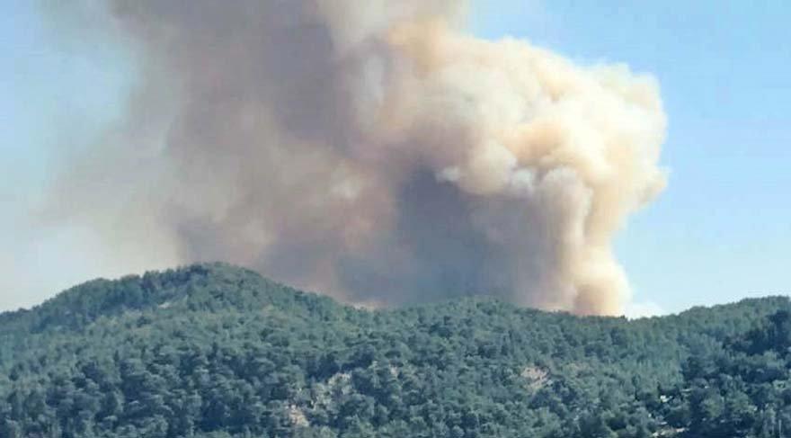 Kaş, Manavgat ve Çanakkale'de de başladı! Orman yangını evleri tehdit ediyor