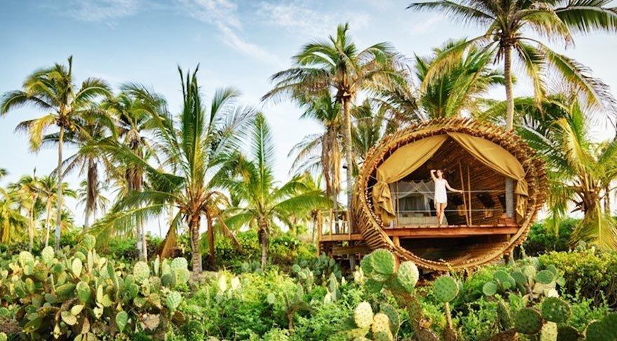 Meksika'da bambudan yapılmış lüks ağaç evler