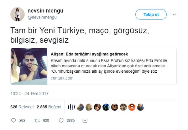 nevsin-ic