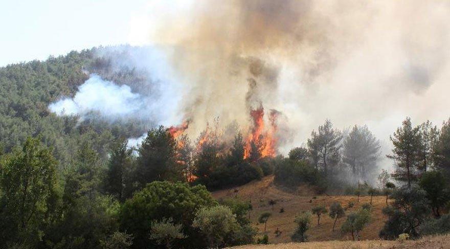 İzmir yangını Manisa'ya sıçradı