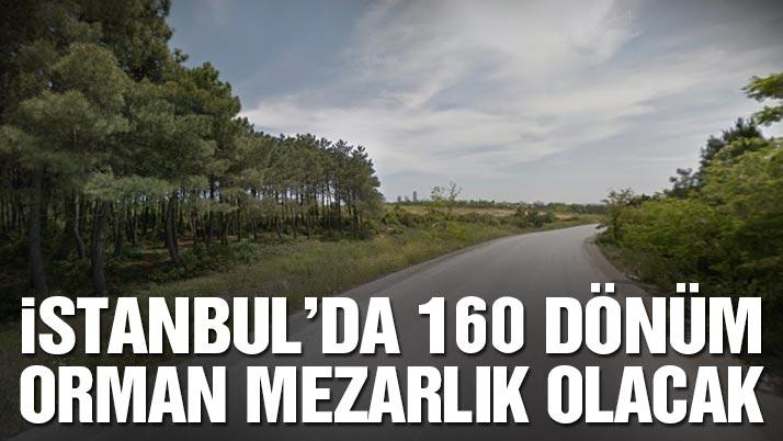İzmir'den sonra Denizli'de orman yangını