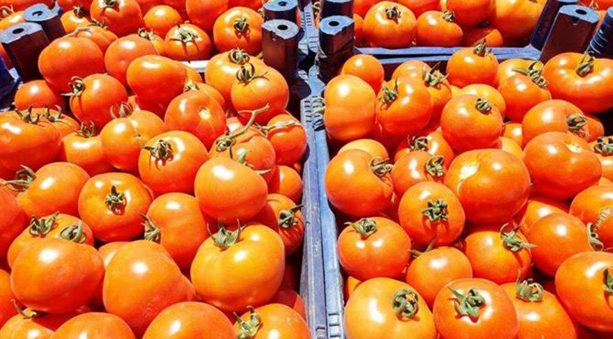 Rusya Büyükelçi'den flaş domates açıklaması