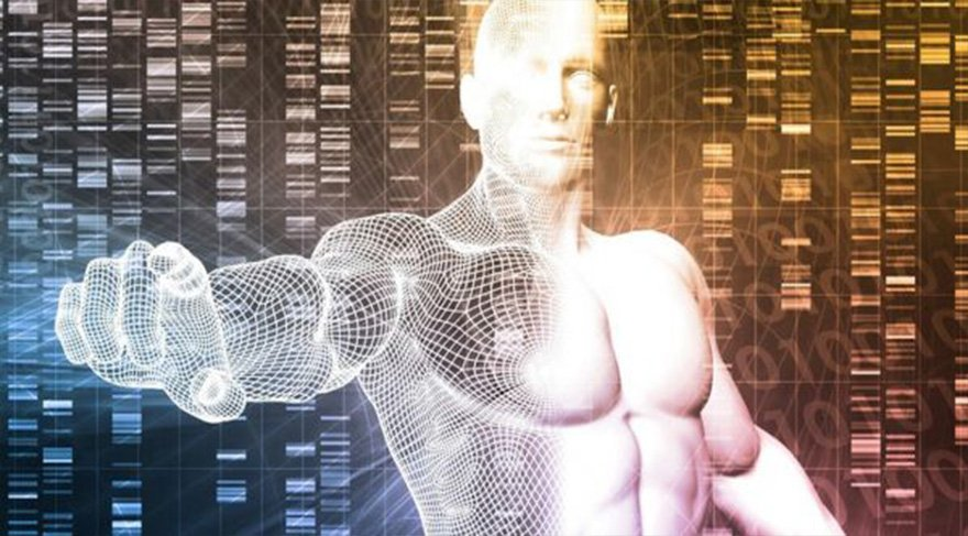 Vücut yenilenmesi gelecekte mümkün olacak mı?