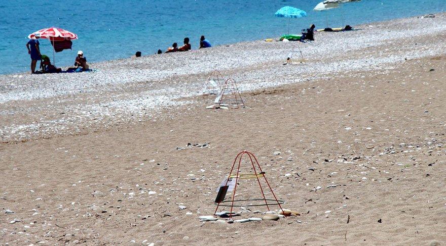Ünlü sahilde caretta caretta yuvaları yarıya düştü