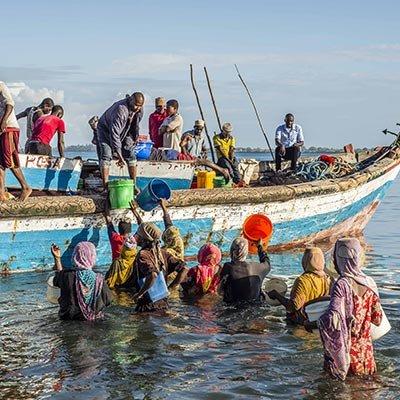 Zanzibar'ın gelgit balıkçıları