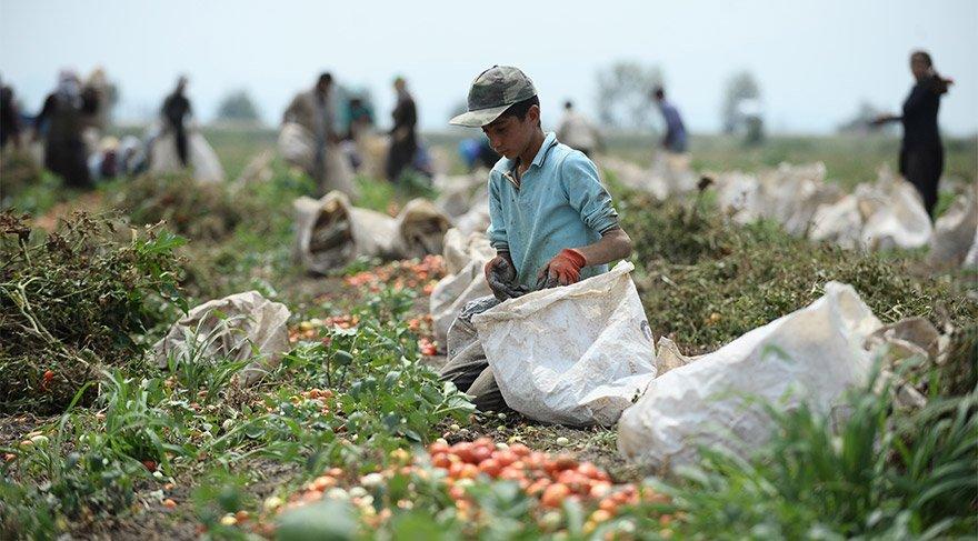 Çocuk işçilere yakın takip
