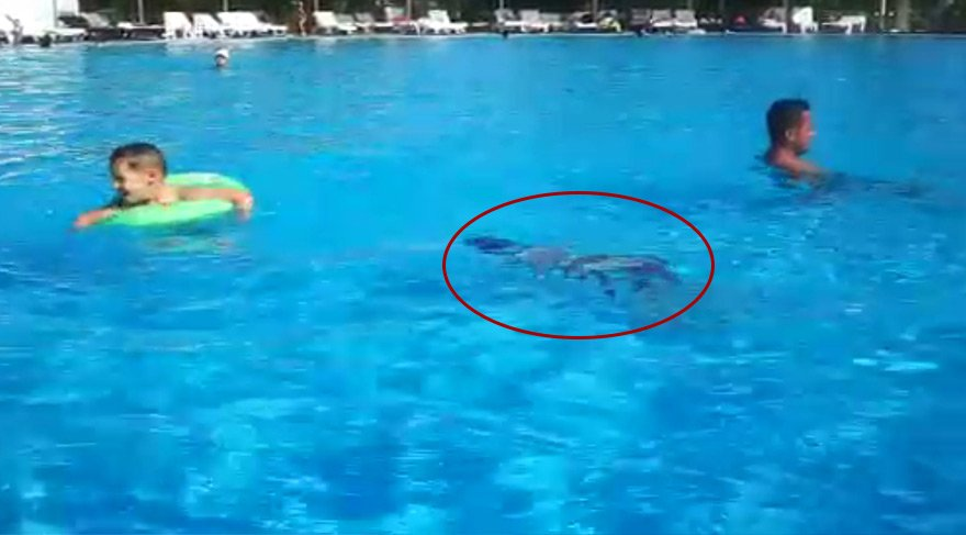 Yiğit'in havuzda boğulma görüntüleri jandarmada