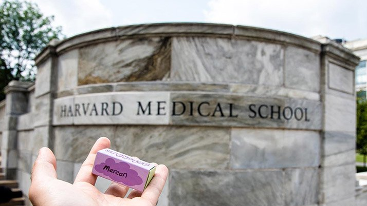 Göbekbağını Harvard'ın bahçesine gömüyorlar