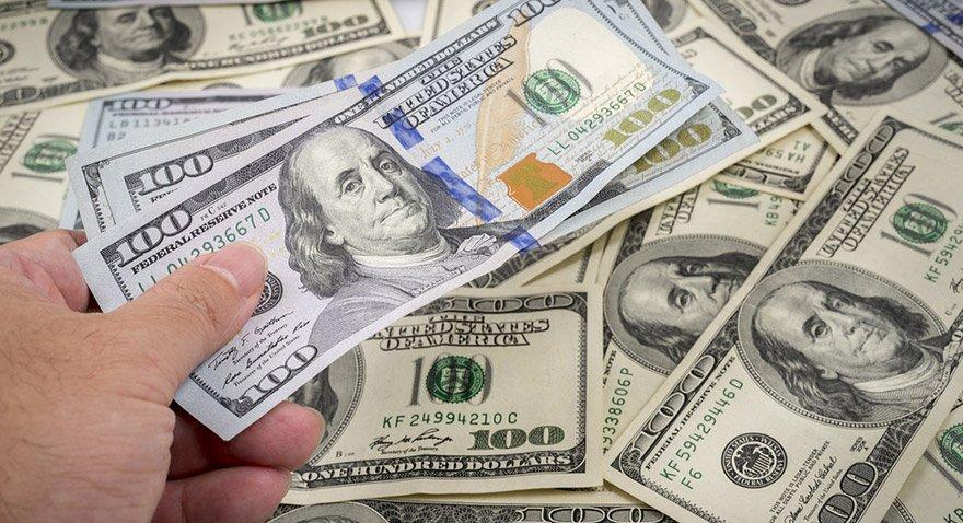 Dolar ne kadar oldu? 24.08.2017