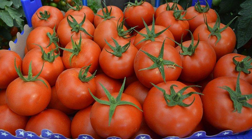 Rusya'dan Türkiye´nin domates açıklamasına tepki