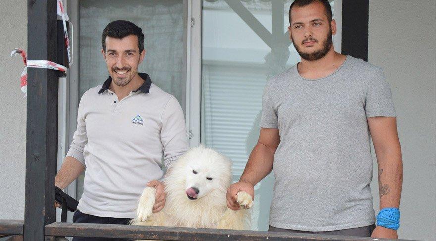 Sayaç okuyuculara 'köpekten korunma' eğitimi