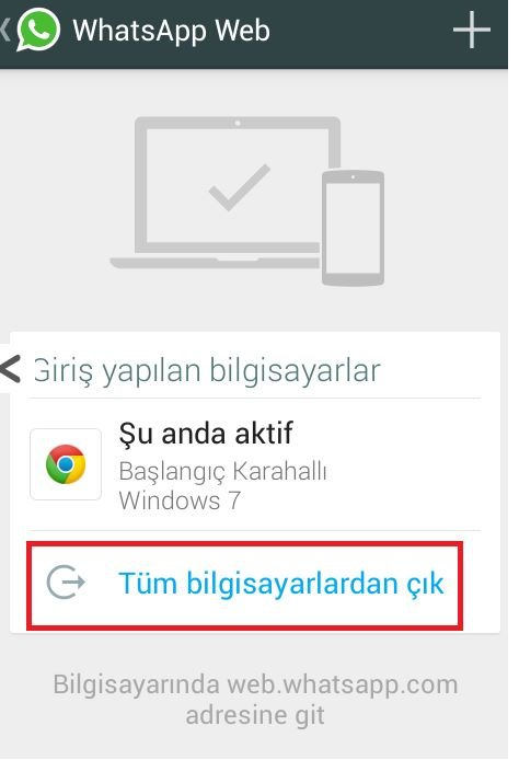 web-cikis