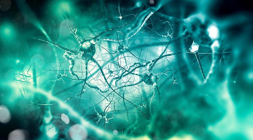 İşte Alzheimer'ı önleyen ve tetikleyen sebepler