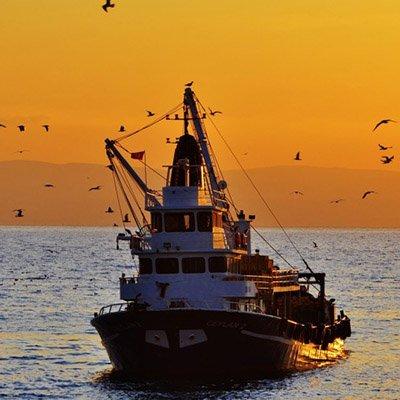 Bakanlığa 'ışıkla avcılık' çağrısı: İptal edin!