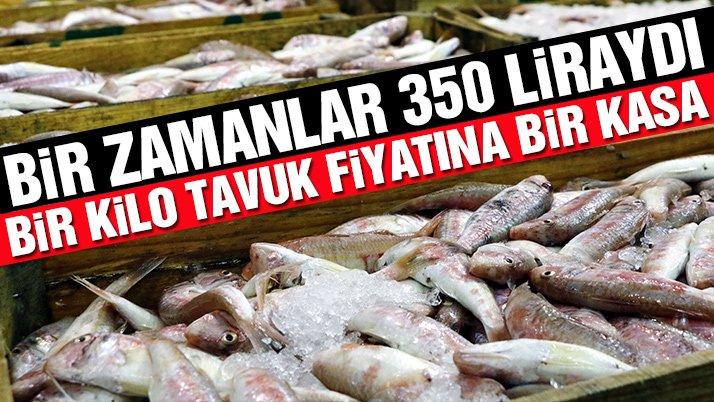 1 kilo tavuk fiyatına bir kasa balık