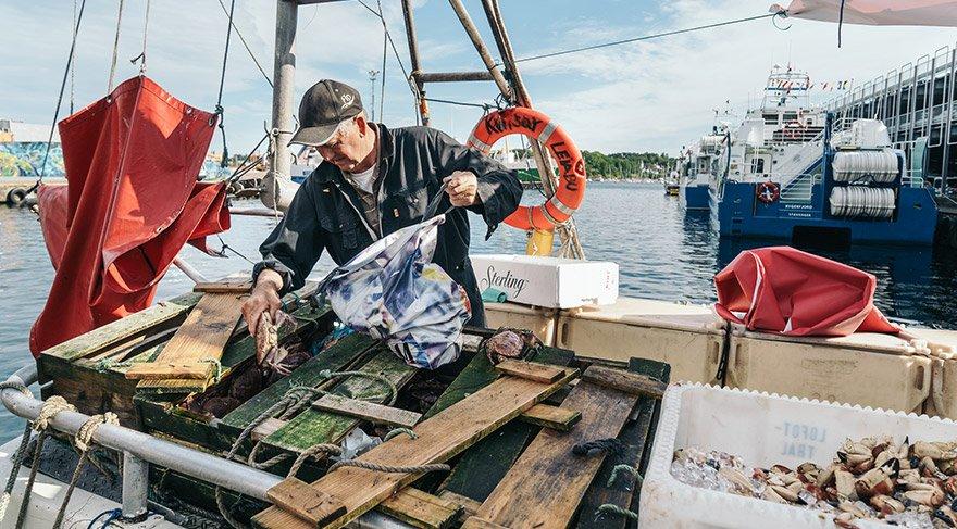 'Norveçliler yeteri kadar balık yemiyor'
