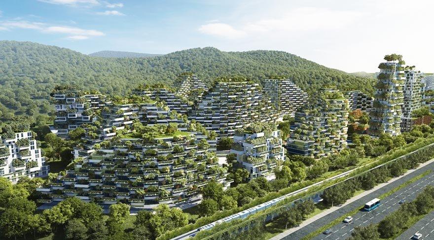 Çin'in toplu konut projesi: Orman şehri