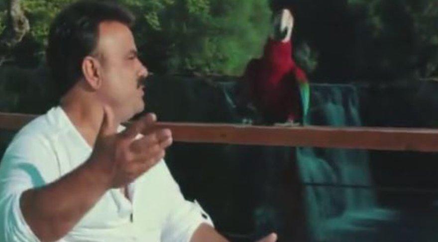 Bülent Serttaş'ın klibindeki efkarlı papağana çok güleceksiniz!