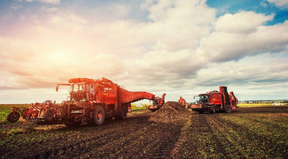 Tarımsal ve hayvansal üretime hibe desteği