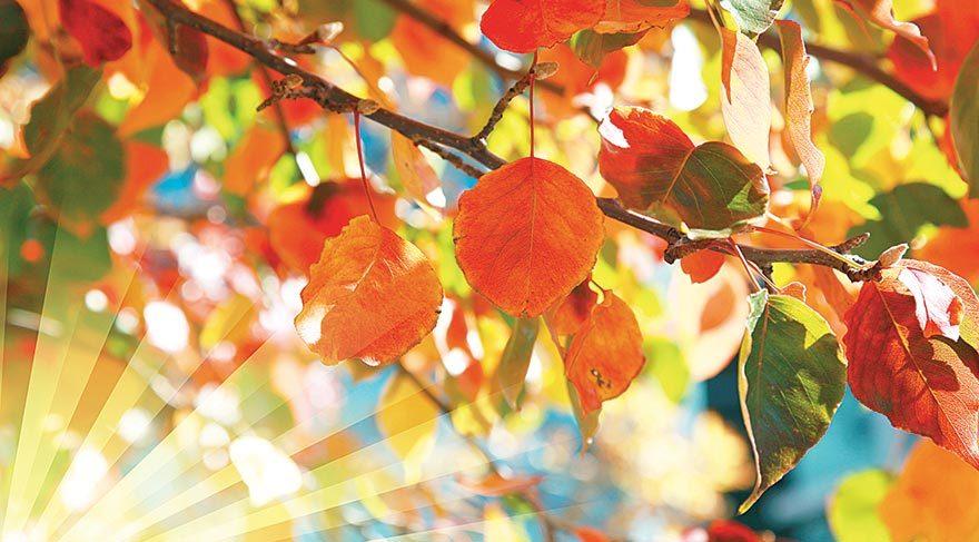 Sonbahar depresyonunun 10 belirtisi