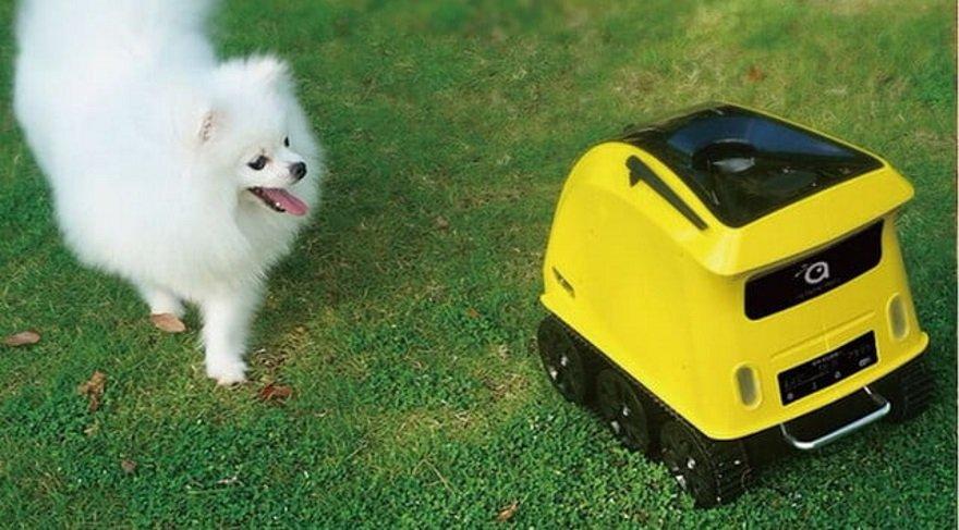 Köpeğinize robot arkadaşlar geliyor…