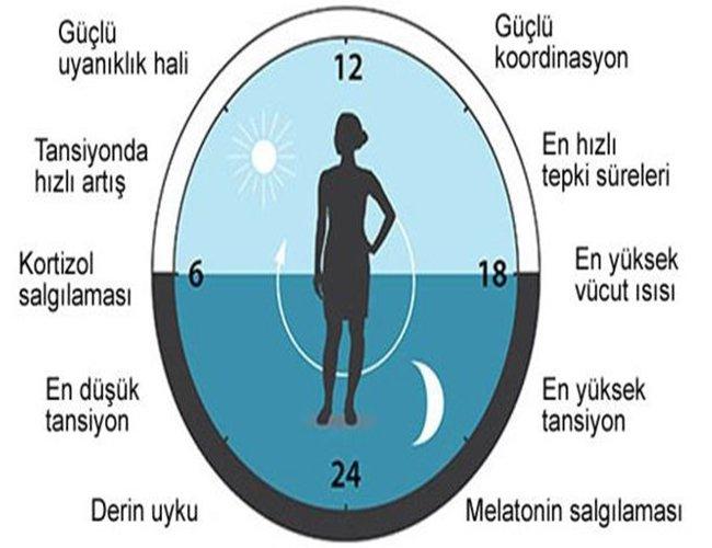 biyosaat-icc