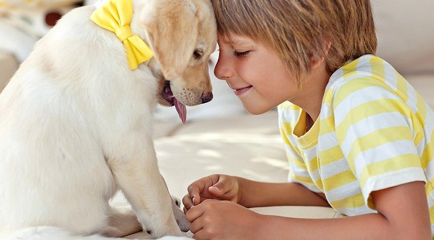 Evcil hayvan besleyen çocuklar daha sağlıklı