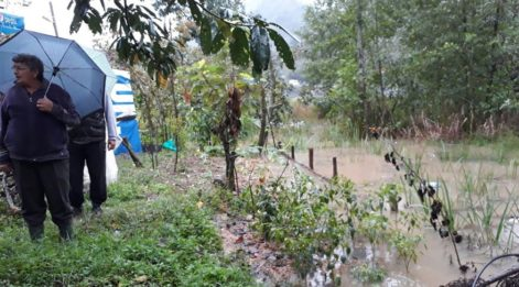 Hafriyatı fındık tarlalarına döken şirketler araziyi mahvetti