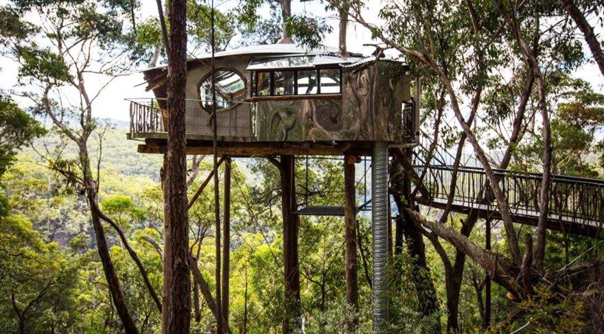 Avustralya'nın sıradağlarında bir ağacın etrafına kurulmuş otel