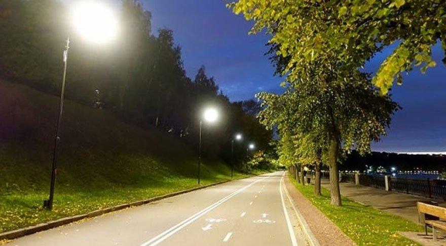 Şehir ışıkları ağaçların yaşamını olumsuz etkiliyor