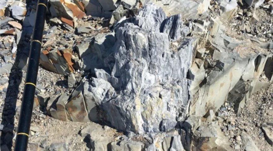 Bilim insanları şaşkın! 280 milyon yıllık fosil bulundu