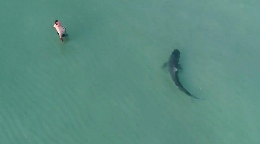 Sahile yaklaşan köpek balığını drone ile görüntülediler