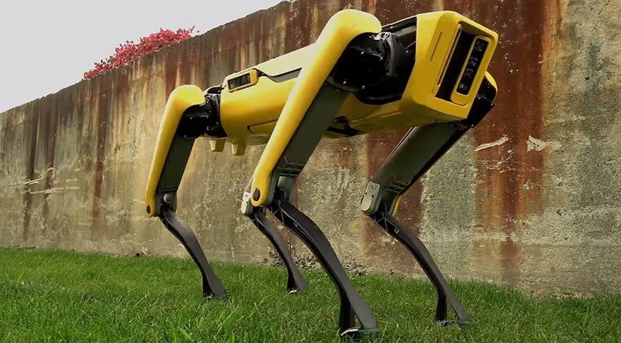 Teknoloji devi yeni robotunu görücüye çıkardı