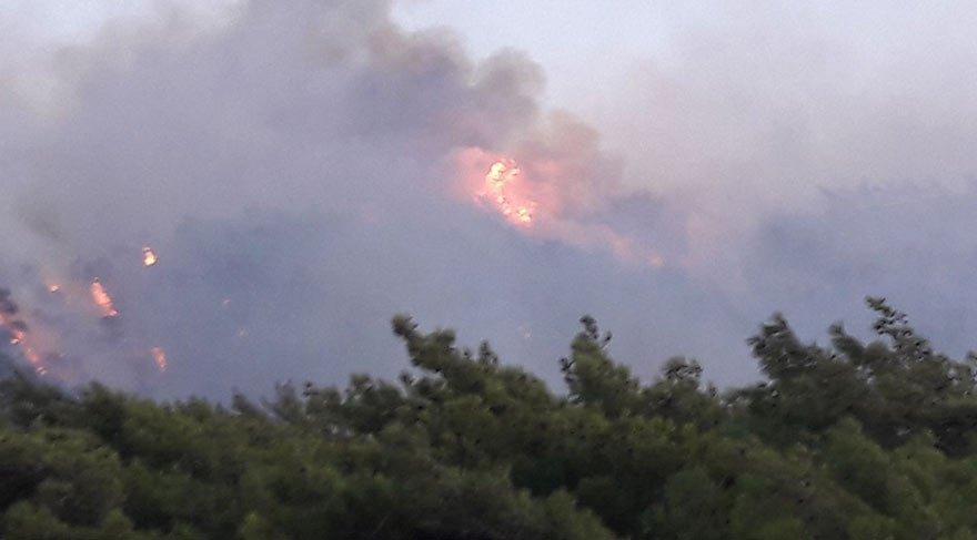 Datça'da 1 km arayla 2 orman yangını!
