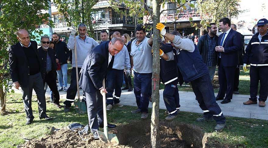 Kadıköy Belediyesi fırtınanın yıktığı ağaçların yerine yenilerini dikti