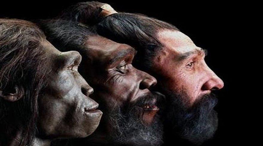 Evrim tarihi değişti mi? Yeni bulgu her şeyi değiştiriyor mu?