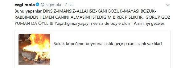 ezgi-mola-ic
