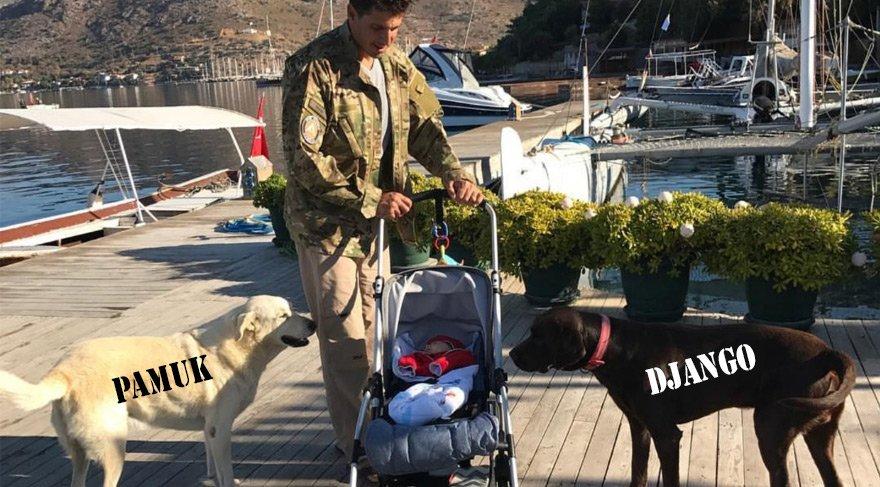 Köpekleri öldürülen Tanem Sivar Dirvana ve Edham Dirvana Sözcü'ye konuştu