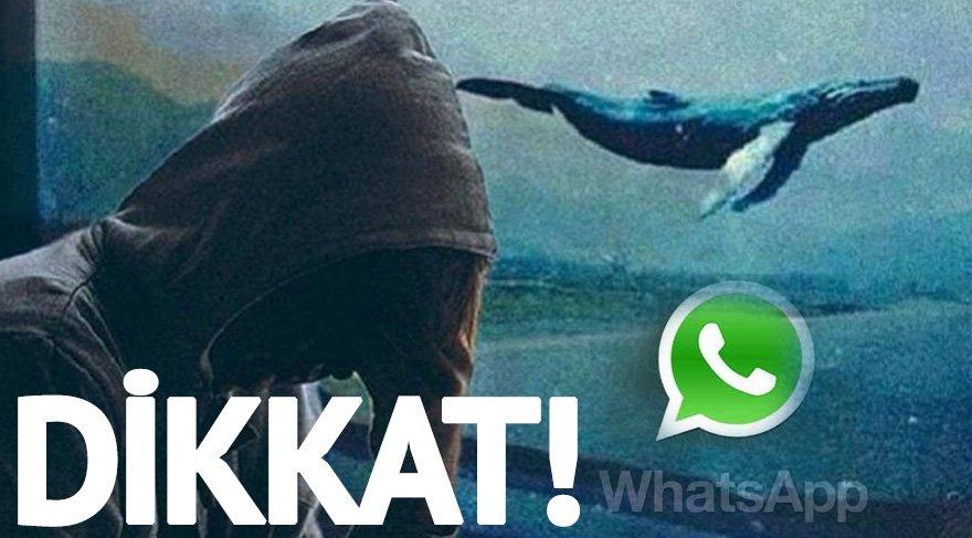 Whatsapp'tan gelen linke dikkat! Mavi Balina Oyunu…