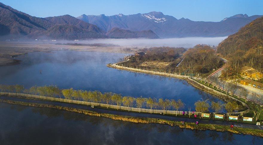 Dünyanın en iyi korunmuş subtropikal ormanları: Shennongjia