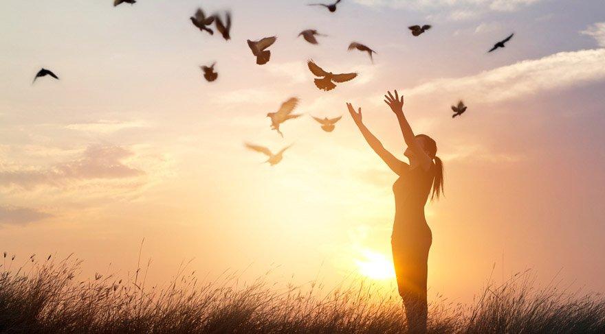 Eski ile yeni arasında harika bir sentez oluşturabilmektir. Yeni düzen ile eski düzenin uyumu sentezini yaratma enerjisidir. Özgürlüğü kazanmak için disiplinli, kontrollü çaba sarf etmek demektir. Özgürlük kazanmak için planlar yapmak anlamına gelir.