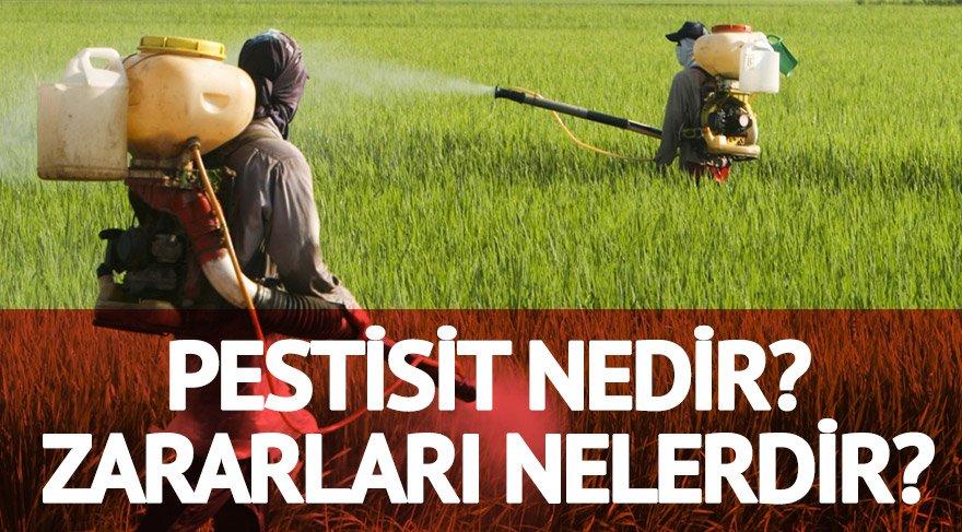 İlaçlarda kullanılan Pestisit nedir? Pestisit'in zararları, etkileri ve türleri