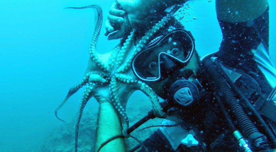 Mavi derinliklerin koruyucusu