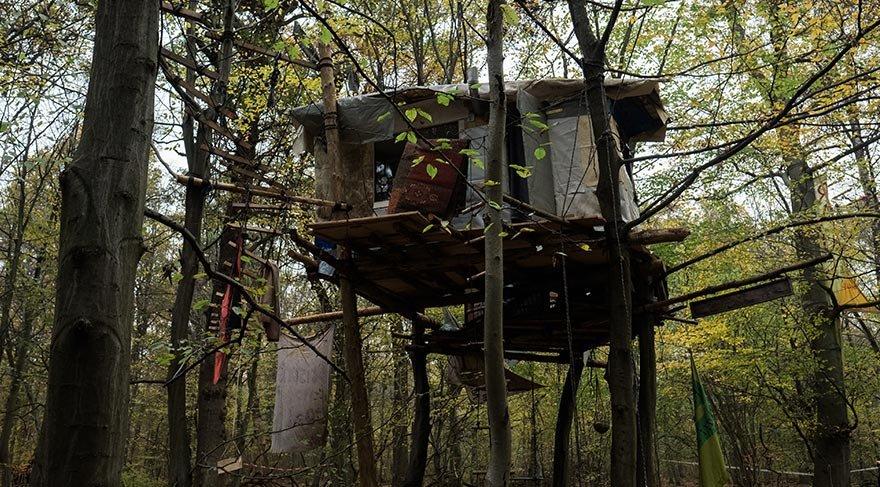 Kömür madenine karşı 5 yıldır ormanda yaşıyorlar