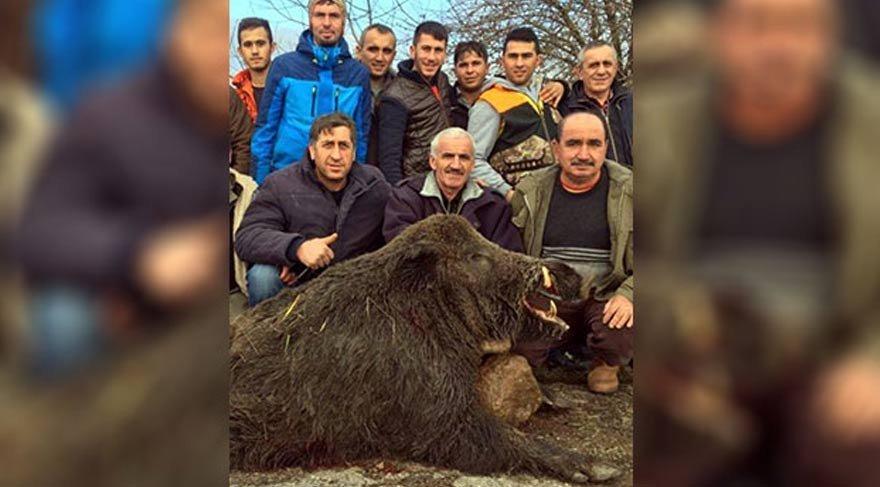300 kiloluk domuzla hatıra fotoğrafı!