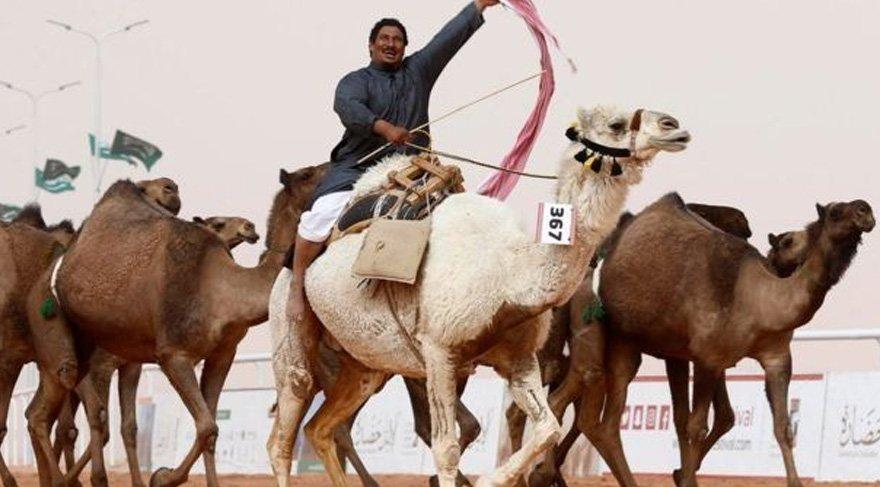 Botokslu develer güzellik yarışmasından ihraç edildi