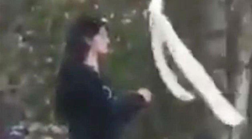 İran'daki protestolara damga vuran kadın
