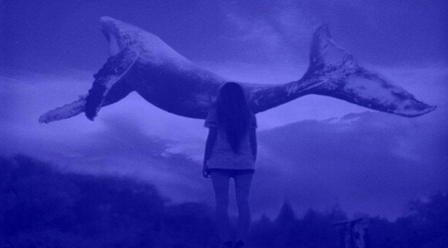 Mavi Balina oyunu nedir? İşte Mavi Balina hakkında merak edilenler ve ayrıntılı analiz