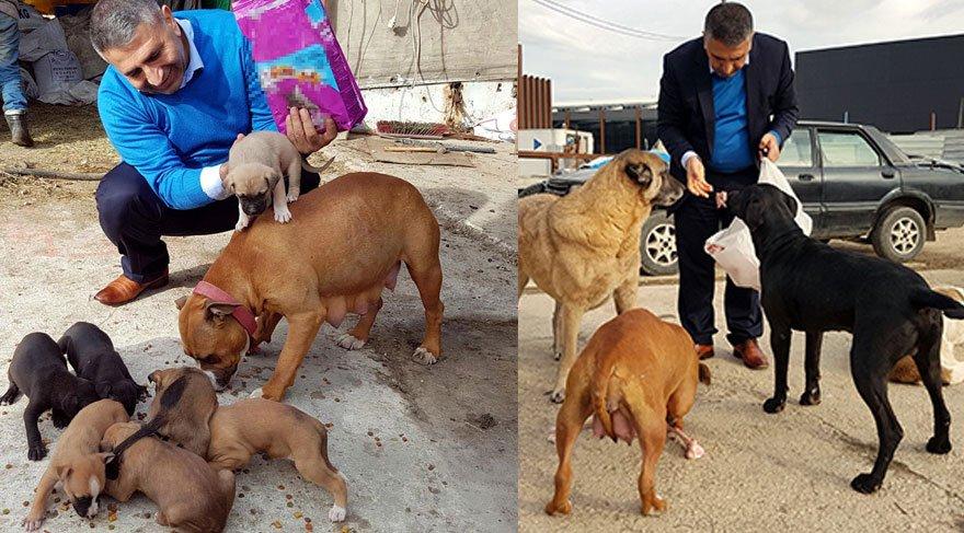 'Hayvansever savcı' yılın ilk gününde sokak hayvanlarını besledi